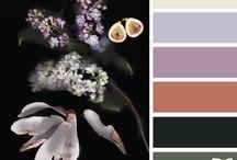 Paleta de colores favoritas