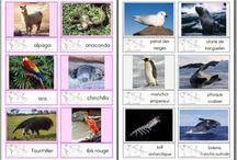 images classifiées