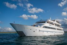 Galapagos Sea Star Cruise - Ecuador / Discover the iconic Galapagos Islands in style and luxury onboard the Galapagos Sea Star Cruise.