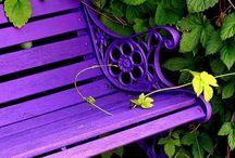 Cottage garden / Vapaa-aika, mökkeily, puutarha