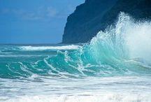 Ocean opulence