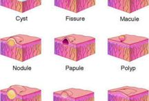 skin/lesions
