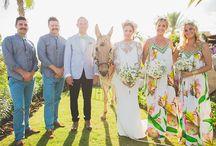 The Wedding Horse  / by One Stylish Bride