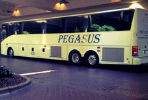Spot the Pegasus Bus! / Have you seen us? Prove it! Follow this board and then email us at Marketing@pegasusbus.com and we'll add you as a pinner to this board! / by Pegasus Transportation