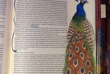 Bible Journal / by Heather Murphy