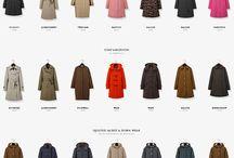 Web Design / ecommerce