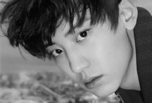 PARK CHANYEOL