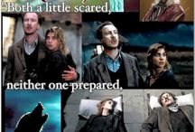 HP collages