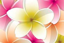 Monddelapro / Ingyenes apróhirdetőoldal minden hirdetni vágyó számára! Mindenkit várok szeretettel itt http://www.monddelapro.multiapro.com/ !