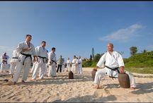 Fighting Arts - The Okinawan Karate / The Okinawan Karate: Shurite system: Shorin-ryu (Kobayashi-ryu), Shorin-ryu (Sukunai-hayashi-ryu), Shorinji-ryu; Nahate system: Goju-ryu; Tomarite system: Matsubayashi-ryu; Uechi-ryu; Ryuei-ryu; Motobu-ryu (Motobu Udundi); Shorin-ryu Matsumura Seito; Isshin-ryu  / http://okkb.org/karateandkobudo/stylesandschools
