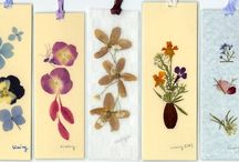 Pressed Flower Ideas