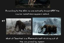 Games/mostly Skyrim