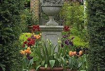 Glorious Garden Ideas