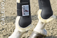 Horse Boots & Accessories