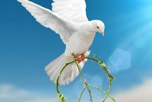 International Day of Peace Cards