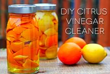 Cleaning and Organizing Tips and Recipes / by Connie Middleton