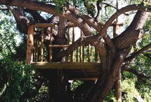 Epic Tree Houses / by Alison Giordano