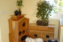 Rabbit Homes / Different solutions for giving bunny a space in your home.