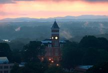 Clemson University  / by Clemson Abroad