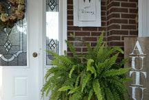 Fern your porch