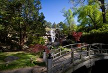 Centennial Japanese Gardens in North America / Japanese gardens in USA and Canada that are 100 years old or more.