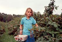 Rural America / by Julie Hagenbuch Photography