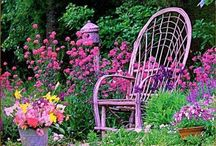 gardens and flowers / by Jeanine Egbert