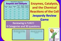 Enzymes, Catalysts and Biological Reactions / by Science Stuff