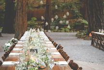 Outdoor Wedding Ideas / Outdoor wedding ideas, outdoor wedding, backyard wedding.