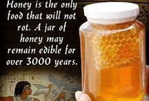 Honey / Honey recipes and facts