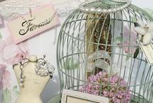 Cage sans oiseau . Bird Cage