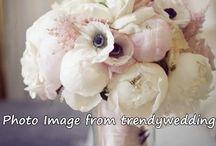 Wedding Bouquets  / Flower Bouquets