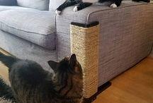Salva divano gatti