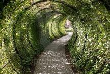 zahradní tunely a prolézačky,mosty a cestičky