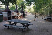 àrees de pícnic amb nens / zones de pícnic amb barbacoes, àrees de pícnic amb zona infantil, àrees de pícnic per passar el dia...