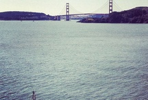 Water Views in Tiburon / The best water views in the Bay Area are seen from the shores of Tiburon, CA!