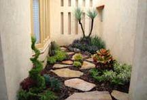 Taman Batu/Rock Garden / Temukan inspirasi sempurna taman batu asri sebagai pelengkap rumah yang mudah perawatannya.