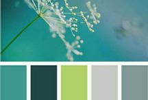 сочетание цвета