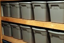 Basement Organizing / by Michelle Hughes