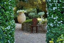 Extraordinary garden