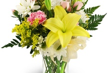Any Occasion Gifts / We offer an enormous selection of flowers, gift baskets and live plants for any occasion. You'll find something for birthdays, holidays, and special occasions. Congratulate a friend or let someone know how you feel. Our beautiful arrangements and baskets are always delivered fresh and at the peak of their beauty. http://www.purplerose.ca/mississauga-florist/any-occasion#.U1Z7f6JudH0