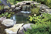 Clive garden ideas