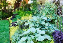 garden ideas / by Lorie St Germain