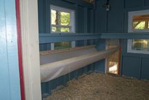 my future chicken coop / by Jayme Coutt