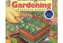 Garden (veggie) / by Molly Strahota