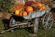 Fall Ideas / by Karen Jorgensen