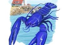 Maine Lobster / by Samantha Elizebeth