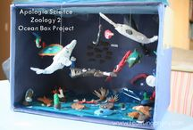 Zoology 2: Swimming Creatures