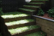 LAND USE AND STEPS