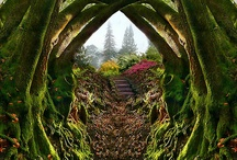 Enchanting Garden Entrances